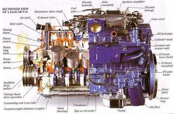 Modern Engines-Sectioned View of a Jaguar V12 (modern engine)